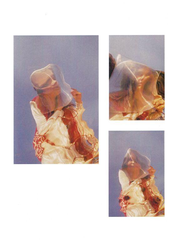 Anthony Stern - Iggy triptych