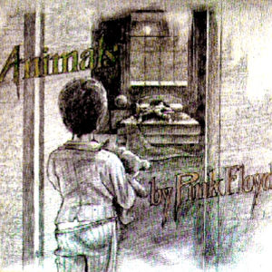 Animals cover (rejected)