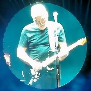 David Gilmour, Tienen